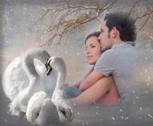 текст песни «Белые крылья – полёт неземной»