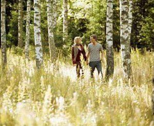 слова песни «У берёз и сосен тихо бродит осень»