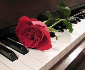 текст песни «Миллион алых роз»
